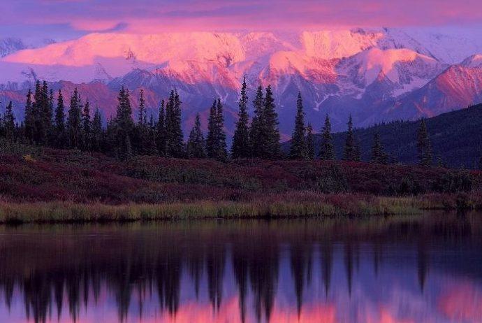 mor dağı
