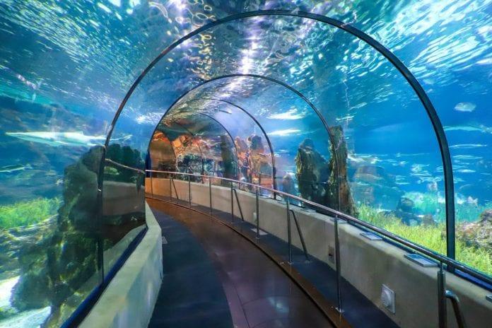 Aquarium Barselona