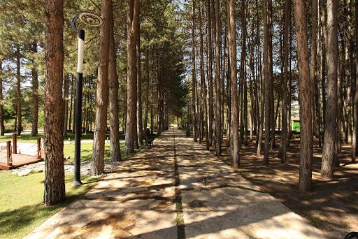 Odunpazarı Botanik Parkı