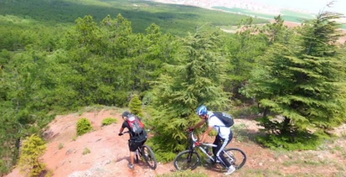 Eskişehir Kent Ormanı