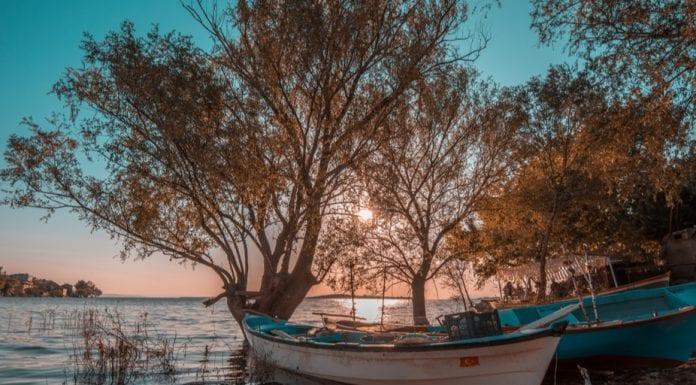 gölyazı bursa