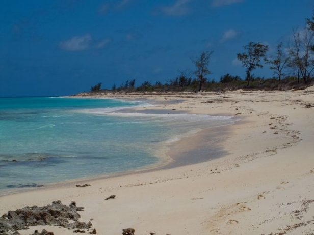 Vamizi Adası Balayı Tatili