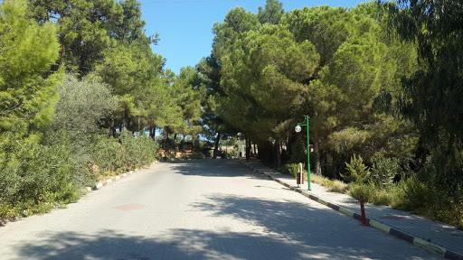 Gümüldür Tabiat Parkı
