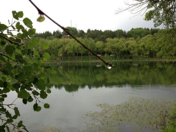 Karagöl Milli Parkı Kamp Alanı, Ankara