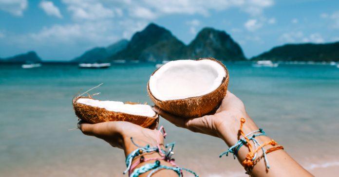 coconut adası