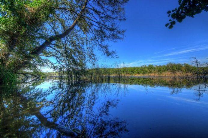 İğneada Longoz Ormanları Kamp Alanı