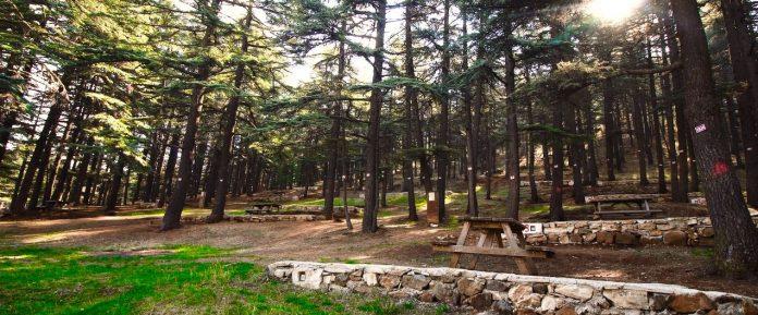Kızıldağ Milli Parkı Kamp Alanı