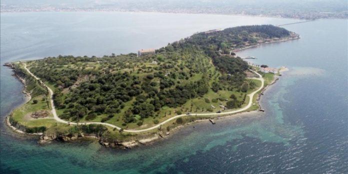 Karantina Adası