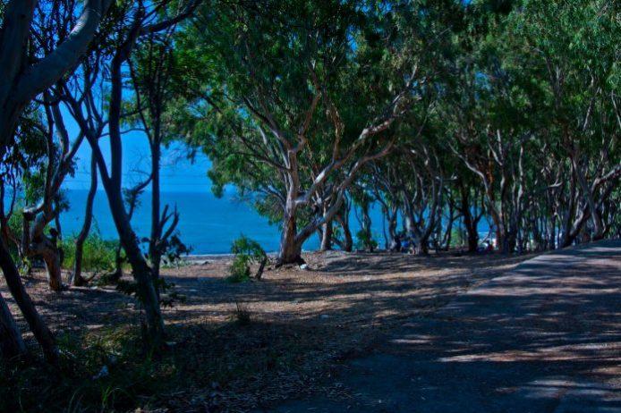 Karataş Kumluk Tabiat Parkı Kamp Alanı