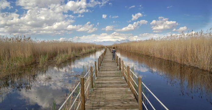 Sultansazlığı Milli Parkı
