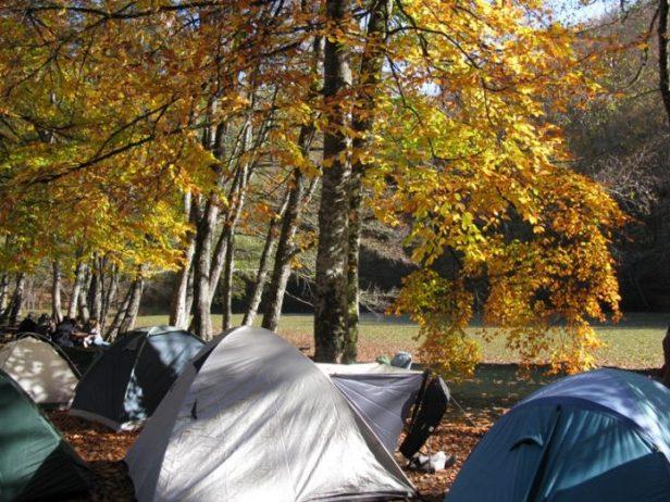 Yedigöller Milli Parkı Kamp Alanı