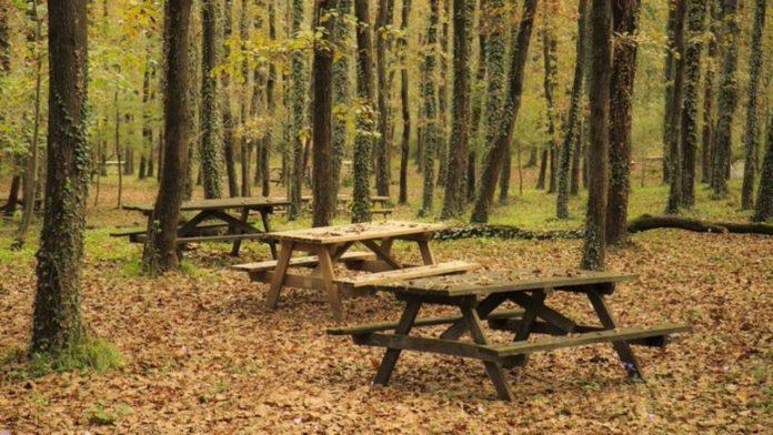 Avcıkoru Tabiat Parkı