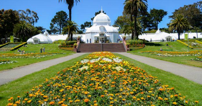 san francisco botanik bahçe