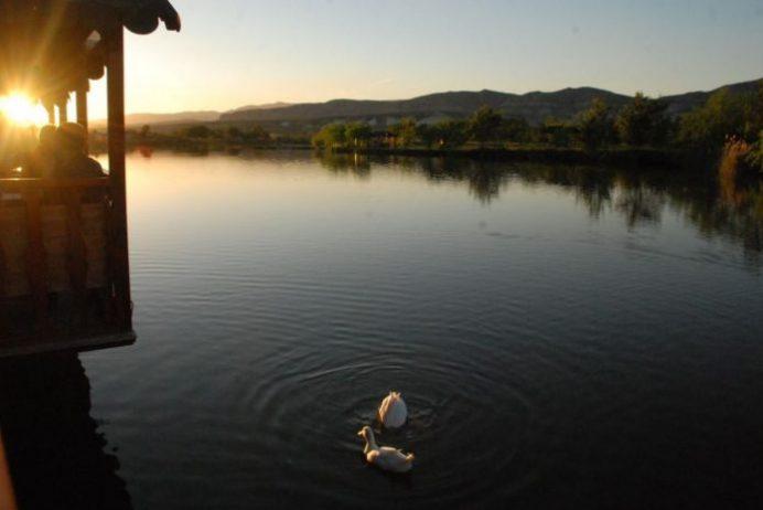 Beypazarı As Balıkçılık Kamp Alanı
