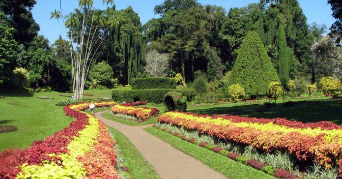nürnberg botanik bahçe