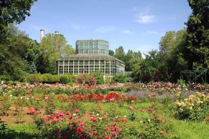 Bucharest Botanik Bahçesi