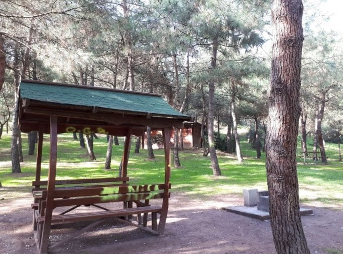 Çınarlıdere Piknik ve Kamp Alanı