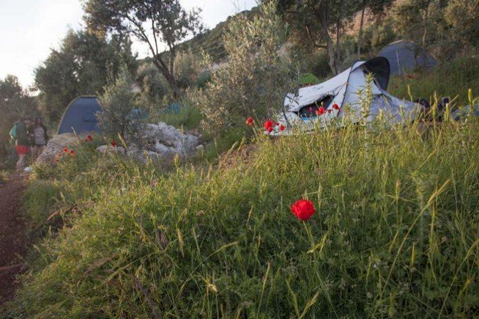 Evren Camping
