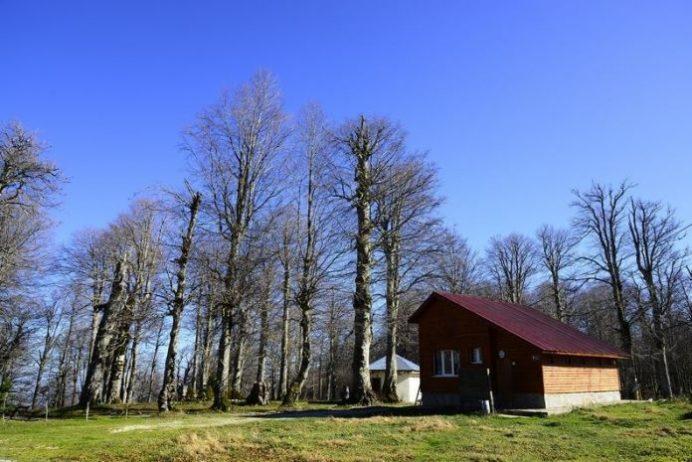 Kuzu Yaylası Kamp Alanı