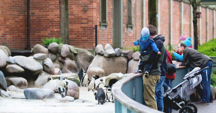 nurnberg hayvanat bahçesi