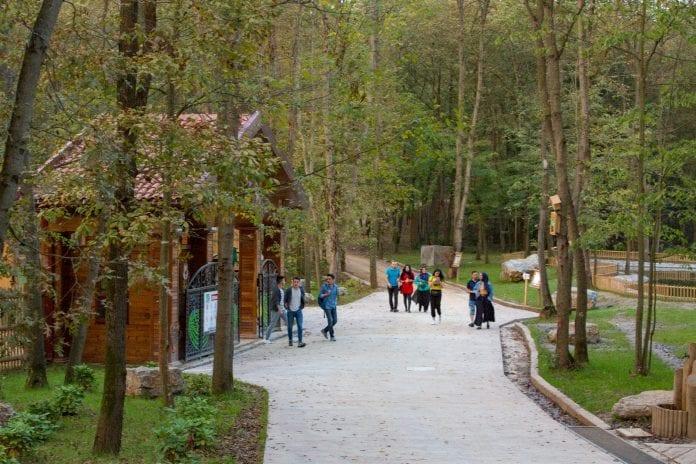 Ormanya Kamp Alanı kocaeli kamp yerleri