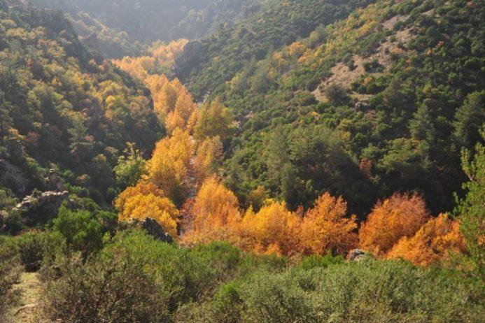 Sadağı Kanyonu Kamp Alanı