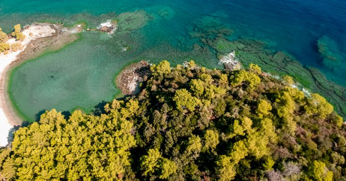 Tekirova Ekolojik Doğal Parkı