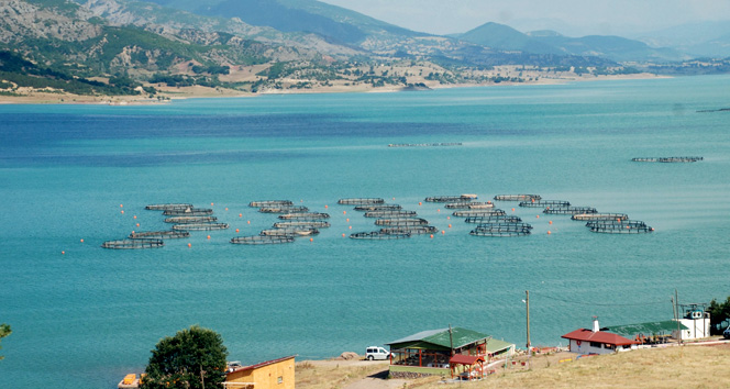 Almus Baraj Gölü