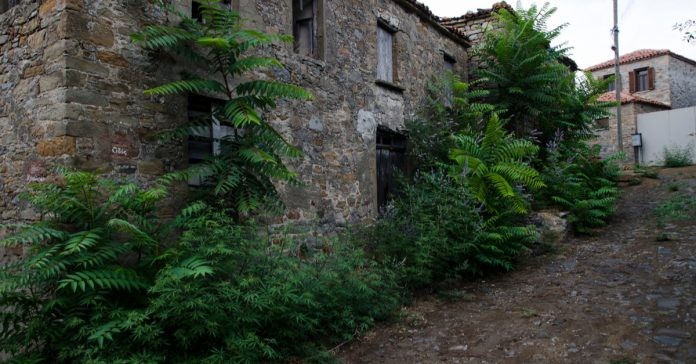 Bademli Köyü
