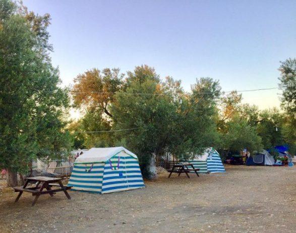 Bademli Zeytin Gölgesi Kamp Alanı