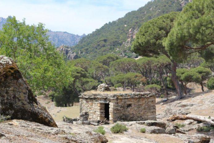 Bağarcık Kutsal Alanı Kamp Alanı