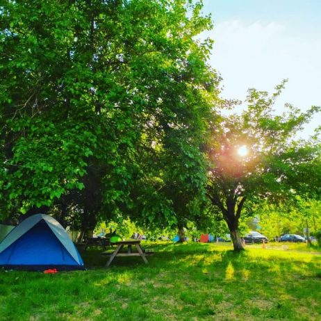 Bağtur Aile Camping