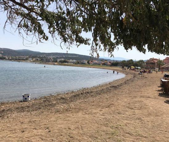 Burhaniye Pelitköy İçmeler Kamp Alanı