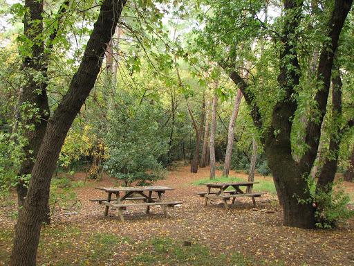 Çetibeli Orman Kamp Alanı