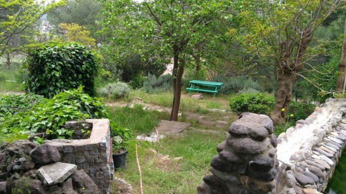 Dikili Atatürk Botanik Bahçesi Kamp Alanı