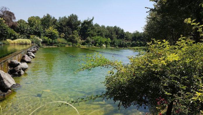 Dülükbaba Tabiat Parkı Kamp Alanı