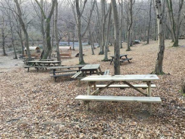 Fatih Ormanı Tabiat Parkı Kamp Alanı