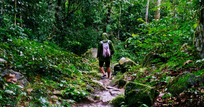 trekking ve yürüyüş