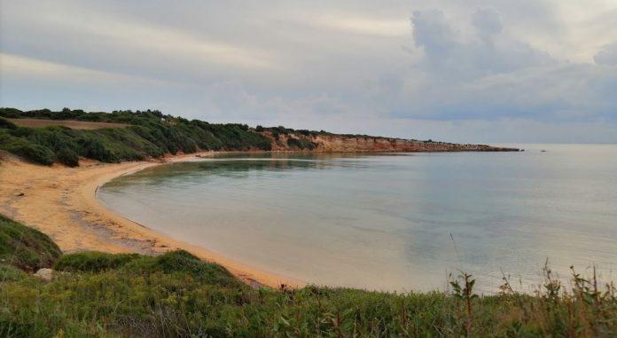 Sarıkum Plajı Kamp Alanı