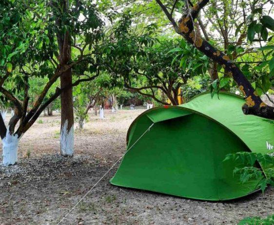 Begonvil Türkbükü Camping