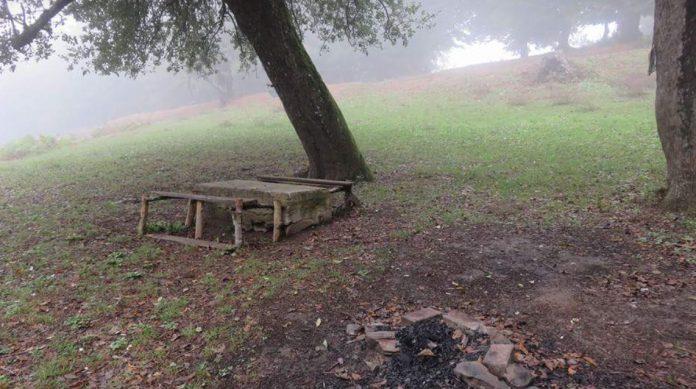 Beşpınar Yaylası Kamp Alanı