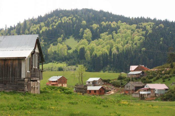 Çiğdem Yaylası Kamp Alanı