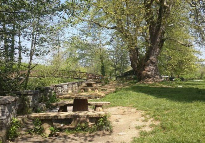 Cumayanı Piknik ve Kamp Alanı