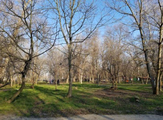 Edirne Kent Ormanı Kamp Alanı