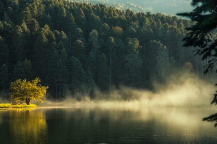 Karagöl Orman İçi Kamp Alanı