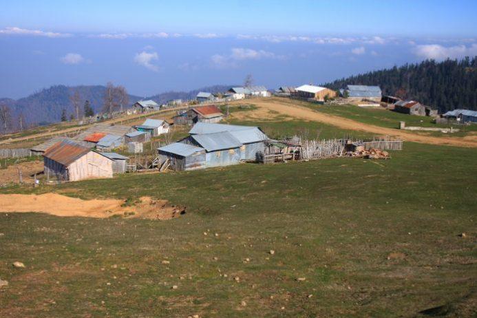 Kardüz Yaylası Kamp Alanı
