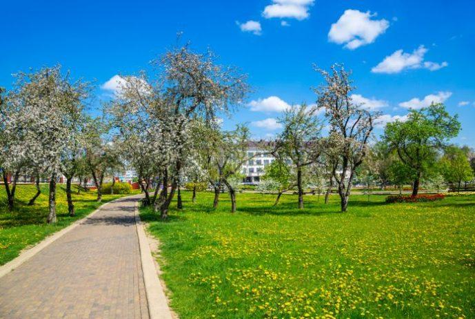 Belediye Binası ve Parkı