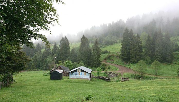 Şolma Yaylası, Trabzon