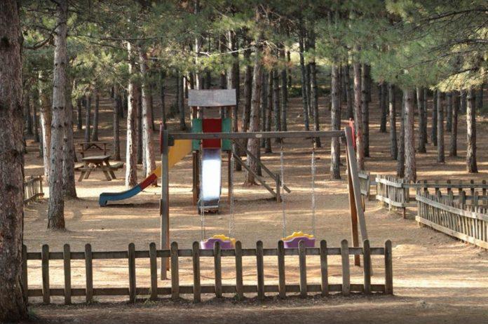 Safranbolu Kent Ormanı Kamp Alanı