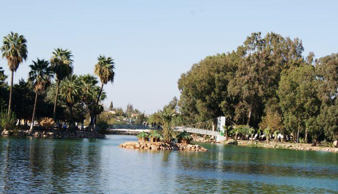 yenişehir gölü